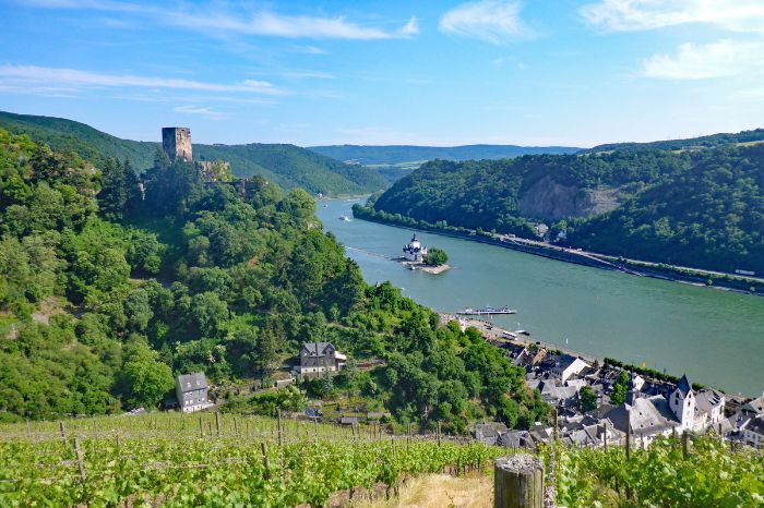Hiking tour Rheinsteig with view to castle Gutenfels