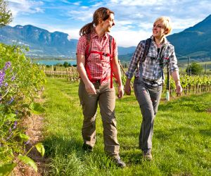 Hiking joys through green vineyards near Kaltern