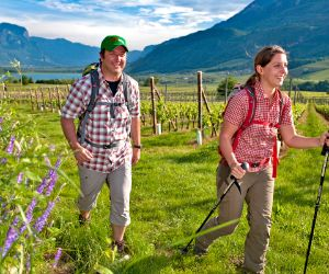 Mountain hiking joys along the wine fields at lake Kalterer See