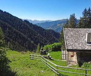Alpine Pasture Hike at the Zell am See district