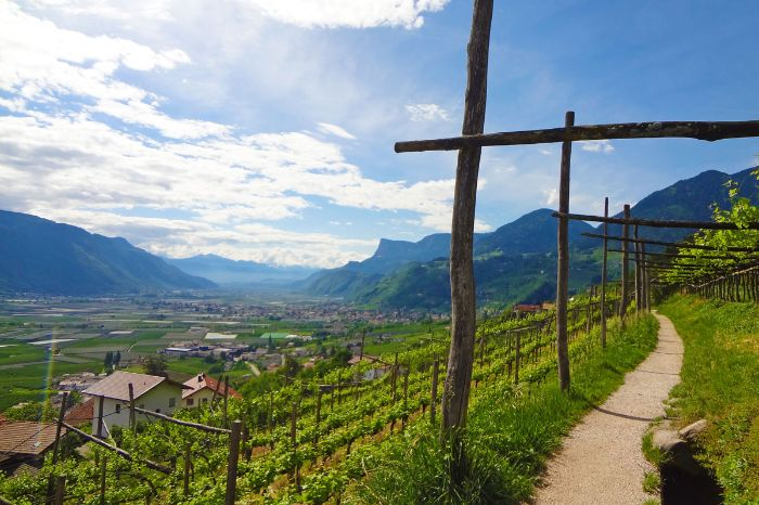 "Beautiful 'Waal paths"" leads through South Tyrolean vineyards"