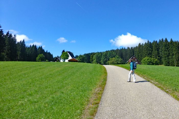 Hiking path to the Black Forest