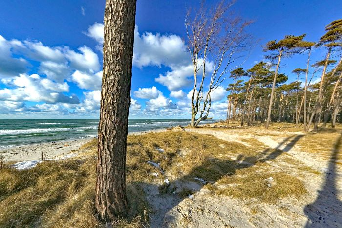 Gorgeous beach at the Baltic Sea