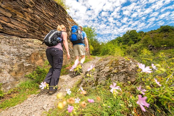 Romantic hiking trails at the Moselle and Eifel Trail
