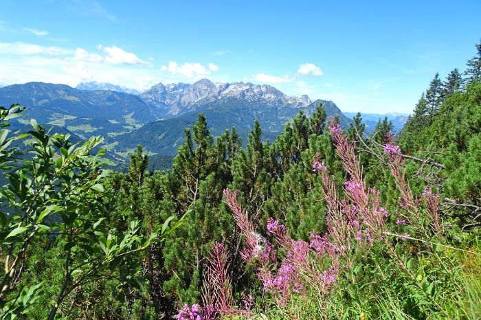 Colourful hiking scenery in the middle of Tennengebirge mountains