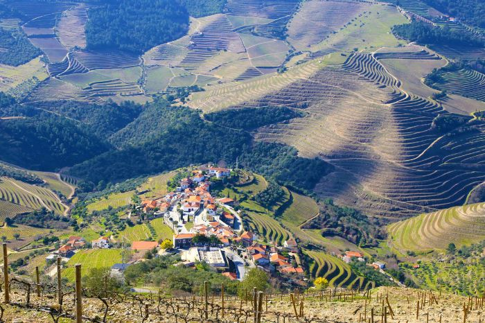 Hiking scenery in the green Douro region
