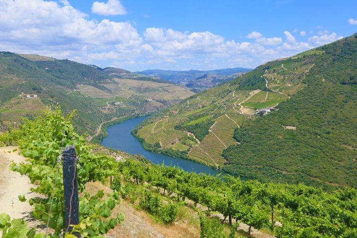 Well maintained walking paths along the Douro river