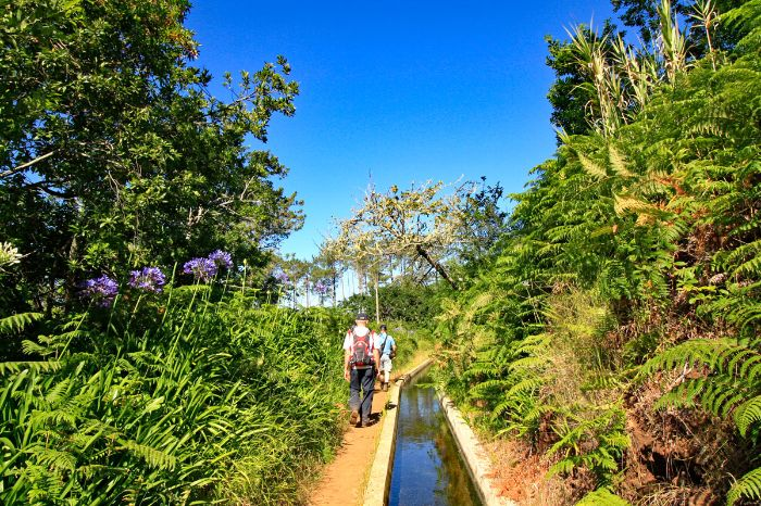 Guided group hiking along Levada trails on Madeira