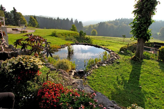 Charming garden with pond