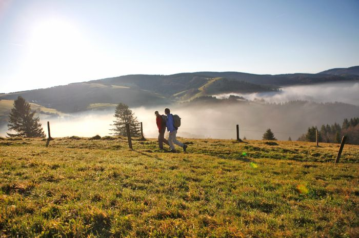 Hiking pair at the foggy Black Forest