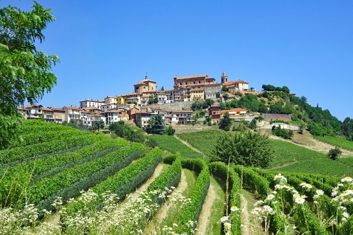 Pictorial region Langhe