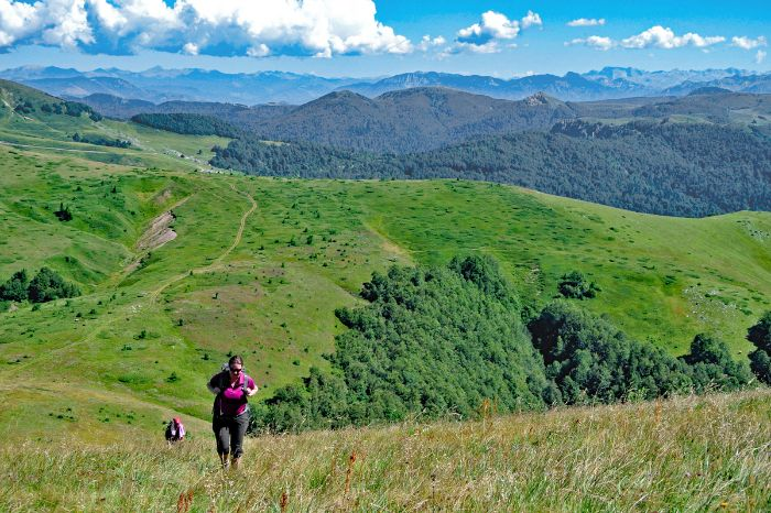 Hiking through green meadows of the Bjelasica mountains