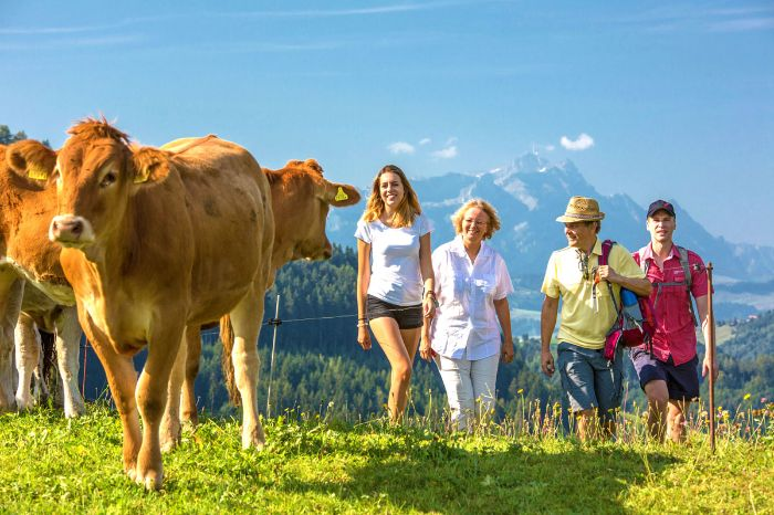 Pasture hike in Eastern Switzerland