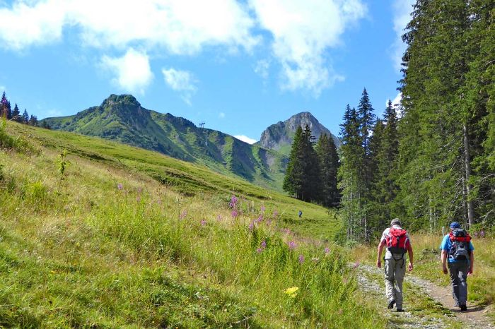 Hiking in Adelboden