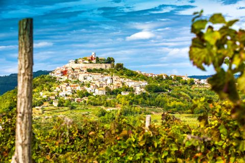 Hiking with a view to Motovun in Istria
