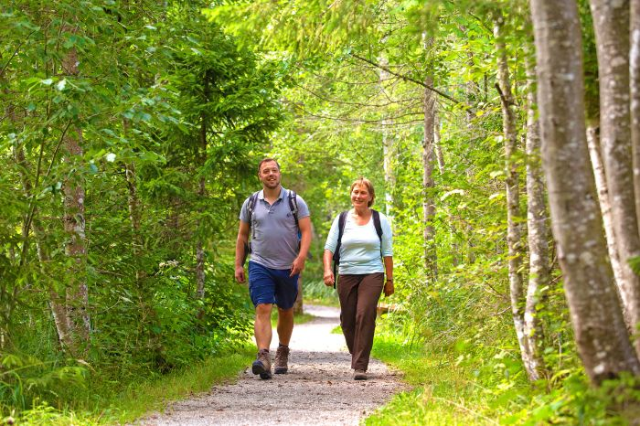 Walkers on good paths through the colorful forests
