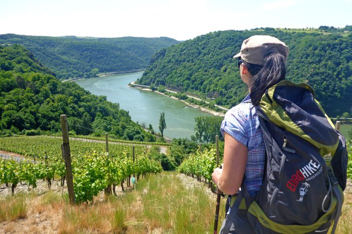 Hiker with view onto vineyards and the river Rhine