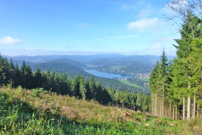 Beautiful sea view at the Black Forest