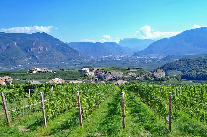 Unspoilt hiking trails through vineyards close to Nals