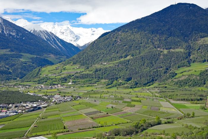 Mountain hiking in Vinschgau valley with view to mount Ortler