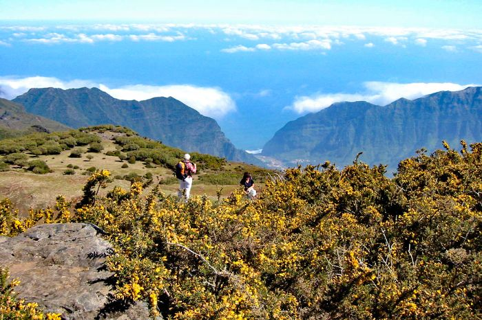 Guided high altitude walking on Madeira island