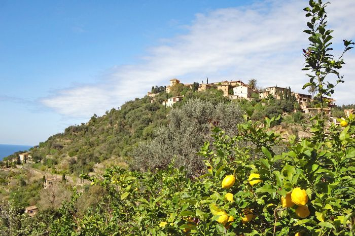 Walking Soller - Orange Valley